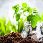 38 astuces pour vivre simplement et être économe